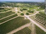 Foto #65926 - Aerial photo of the Bodega Garzón