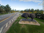 Foto #66542 - Aerial view of the bull and route 5 to the south